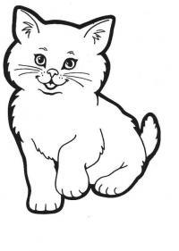 Раскраски кошки  раскраски, пушистый котенок, для детей
