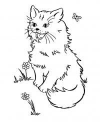 Раскраска кошка и бабочки бесплатно