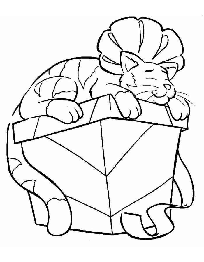 Детские раскраски для девочек и мальчиков, кошка на коробке