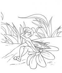 Картинки для витражных красок цветы, фея сидит на цветке