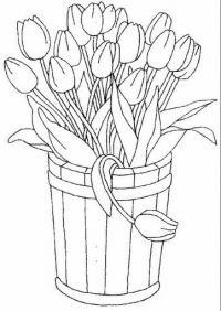 Эскиз рисунка для раскраски, ведро тюльпанов