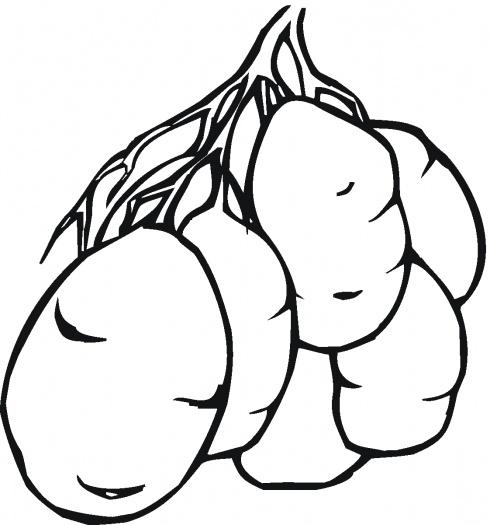 Детские раскраски овощи, картофель