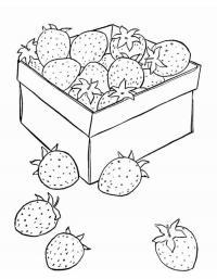 Детские раскраски для девочек и мальчиков, земляника в коробке