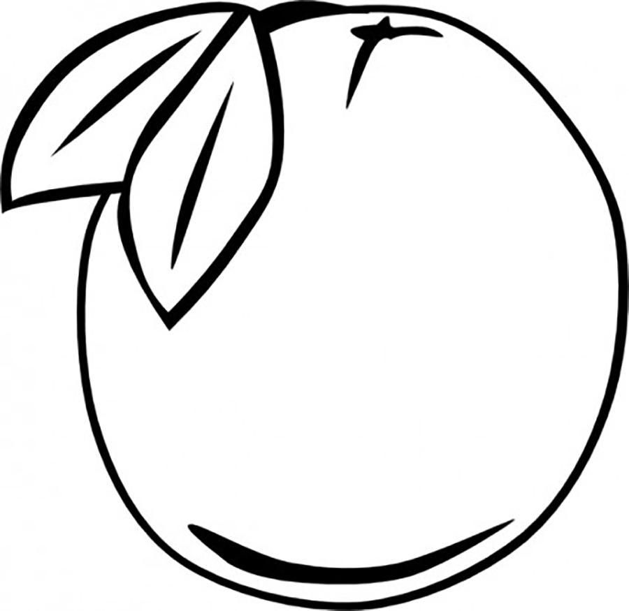 Раскраски фрукты и овощи фрукты шаблон, трафарет для вырезания из бумаги, апельсин