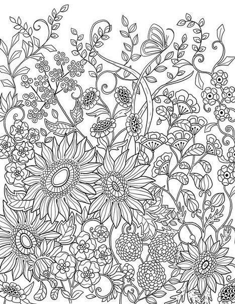 Раскраски антистресс. цветы, подсолнухи