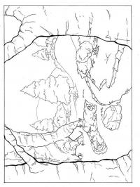 Лес, елка, камни