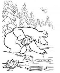 Раскраски берегу мишка косолапый кормит рыбок на берегу речки