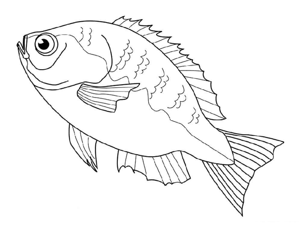 Рыба картинка для раскрашивания