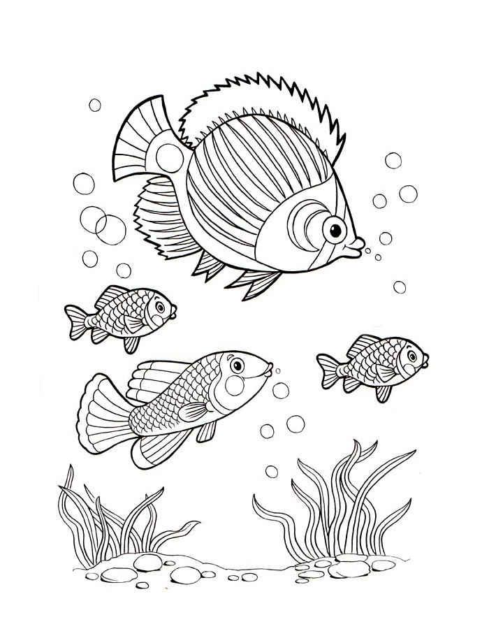 Детские раскраски для девочек и мальчиков. рыба пила и рыбки