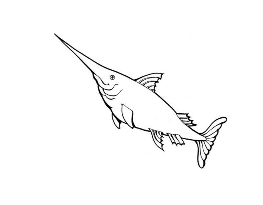 Детские раскраски для девочек и мальчиков. рыба с острым носом