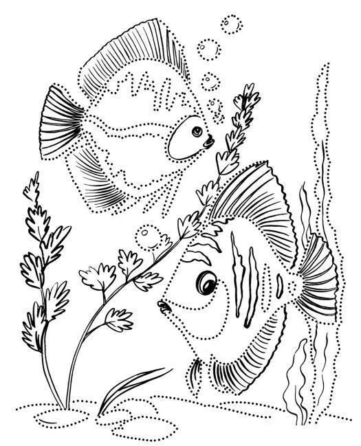 Раскраски для детей. аквариумные рыбки