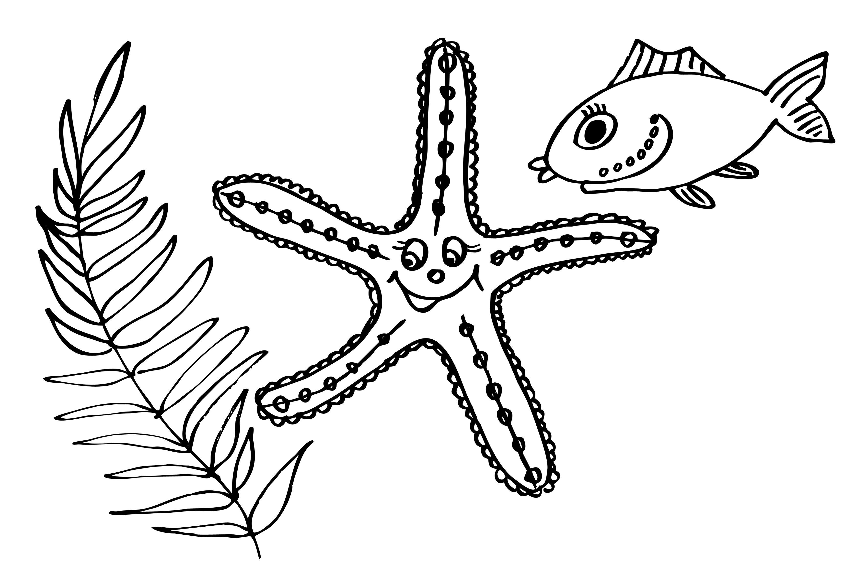 Раскраски подводный мир детская раскраска подводный мир,  морская звезда, рыбы, водоросли