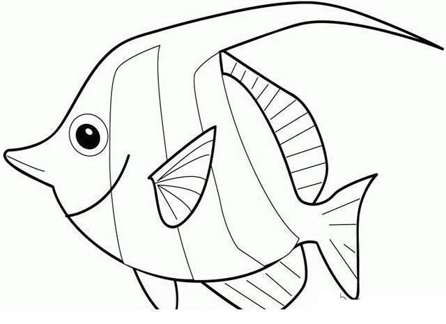 Раскраски подводный мир рыба рыбка природа подводный мир