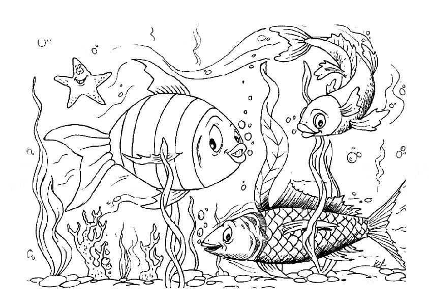 Раскраски подводный мир природа подводный мир рыбки морская звезда
