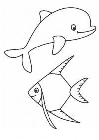 Дельфин и рыба