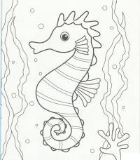 Раскраски подводный мир морская лошадка вода океан глаза конек смотрит