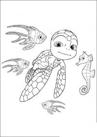 Раскраски подводный мир черепашка рыбки морской конек природа подводный мир