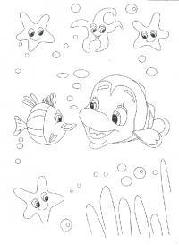 Подводный мир в поисках немо