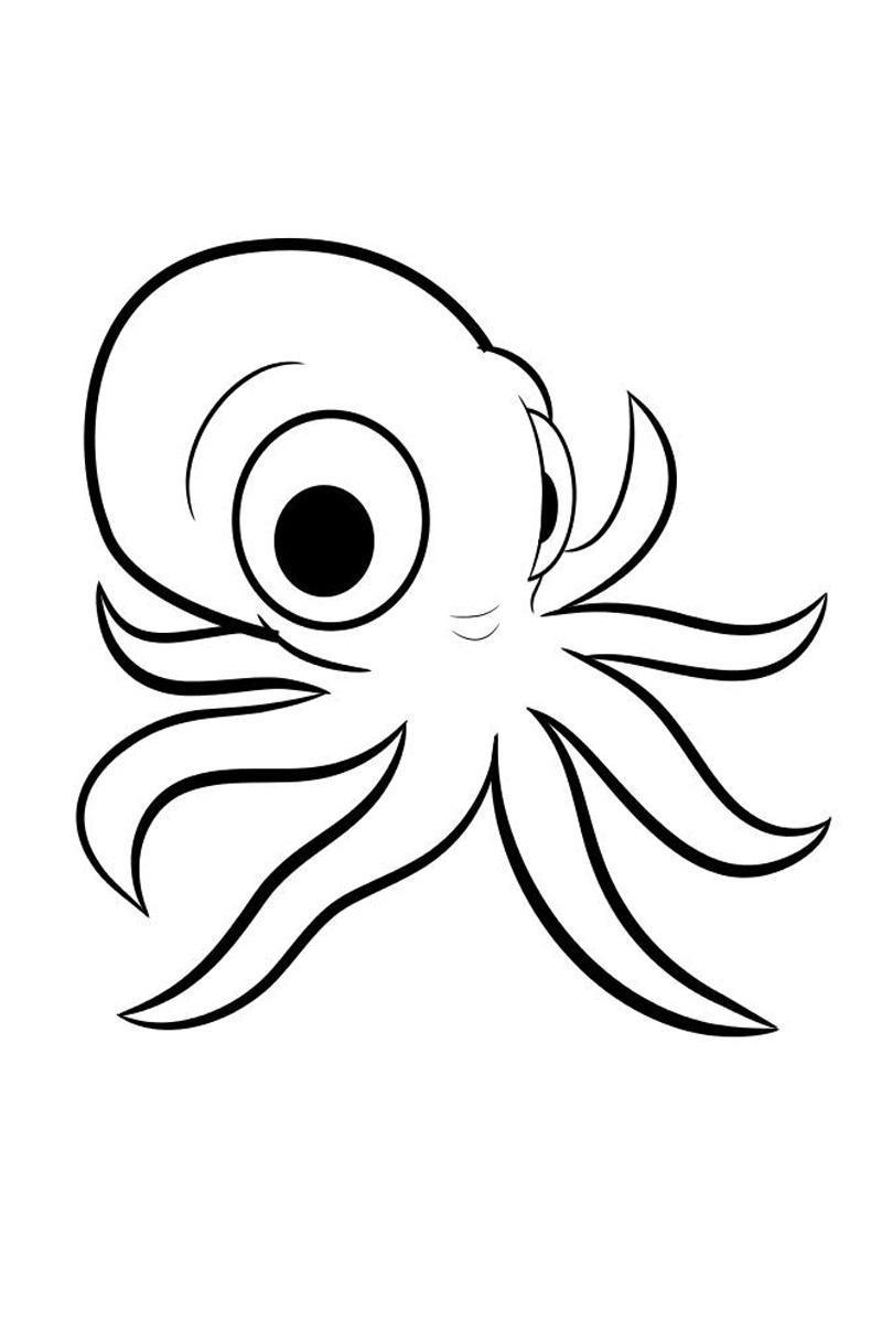 Раскраски подводный подводный мир, осьминог