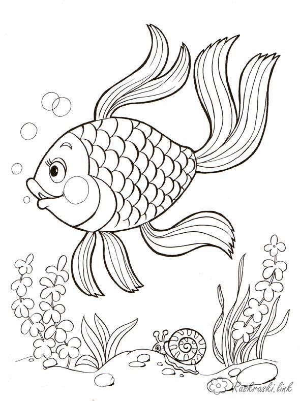 Рыбки Раскраски водоросли подводный мир, рыбка, водоросли,  улитка Раскраски распечатать