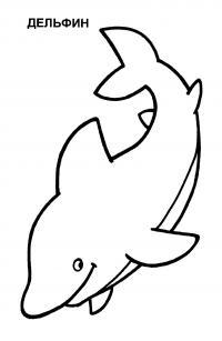 Раскраски дельфин детская раскраска дельфин