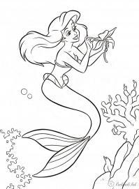 Раскраски водоросли русалка, морской цветок, водоросли