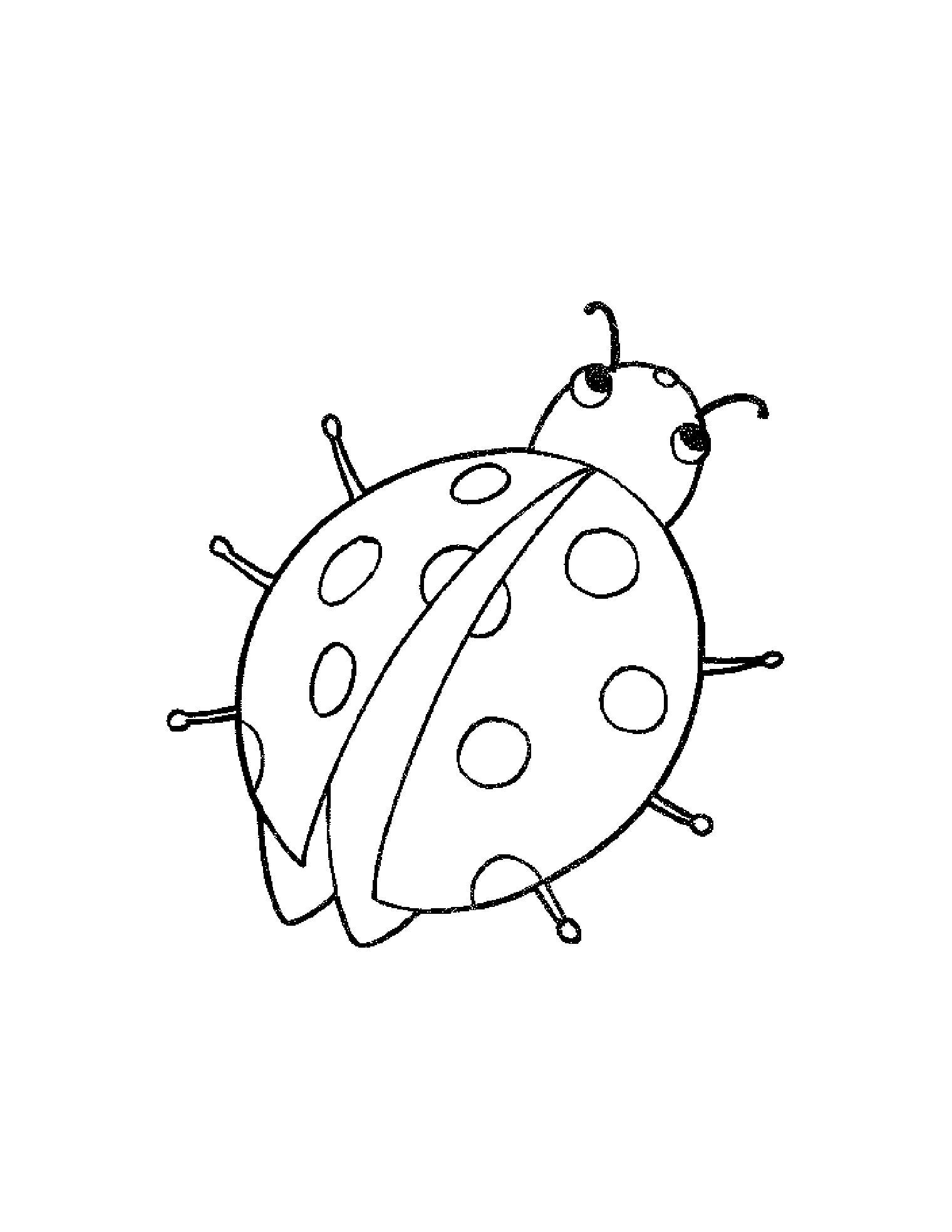 Распечатать бесплатные раскраски для детей: животные: насекомые, бабочки