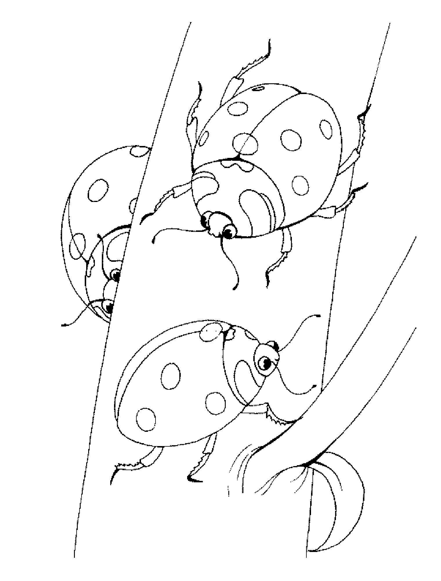 15+ Раскраска Онлайн Гусеница