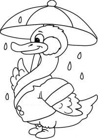 Скачать раскраску, уточка под зонтиком