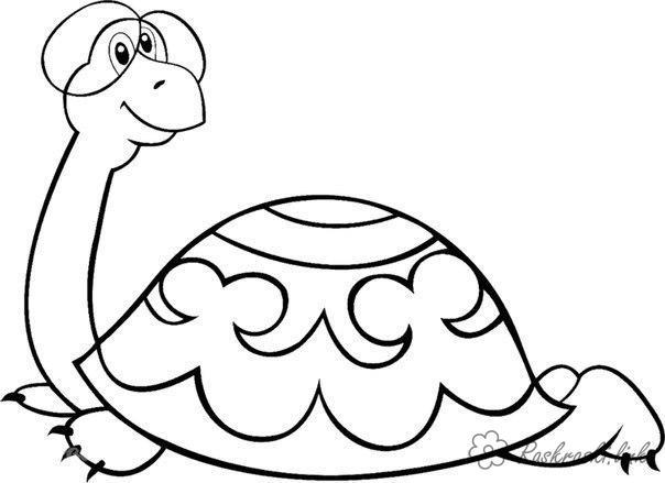 Раскраски черепаха большая черепаха, раскраски, советские мультфильмы