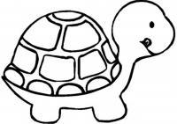 Раскраски черепаха раскраски рептилии, раскраски природа, раскраски малышам, черепаха