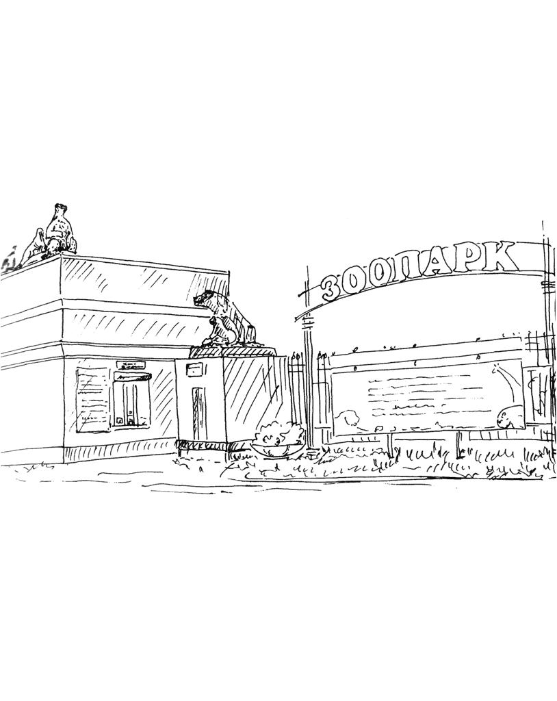 Калининградский зоопарк раскраска