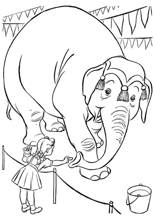 Слон и дети