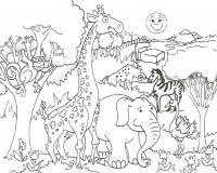 Зоопарк - раскраска №58